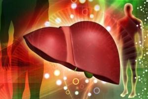 liver cc